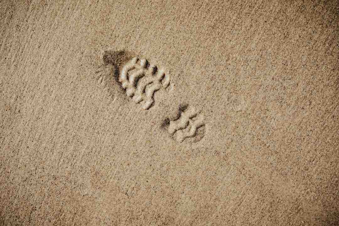 How to Manage Your Digital Footprint