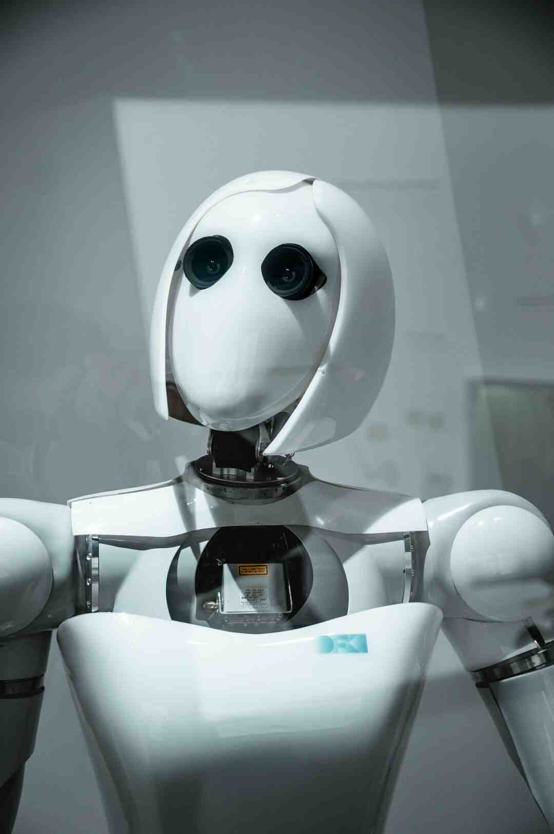 How much does a Nao robot cost?